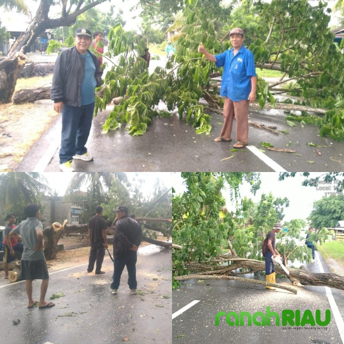 Antisipasi Laka Lantas, MPB dan Tokoh Masyarakat Desa Senggoro Lakukan Penebangan Pohon