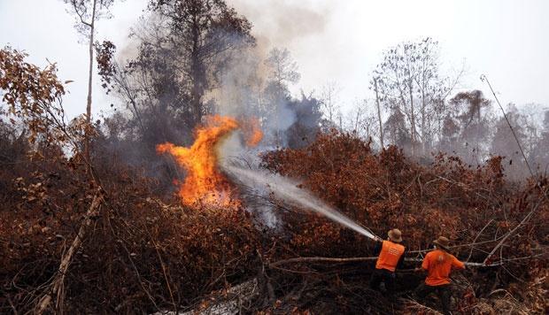 18 Hot Spot Terpantau di Riau