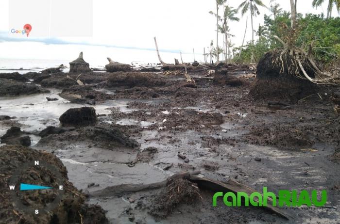 JMGR Bengkalis : Riau Hijau Mangkrak, DLHK Riau Wajib Gerak