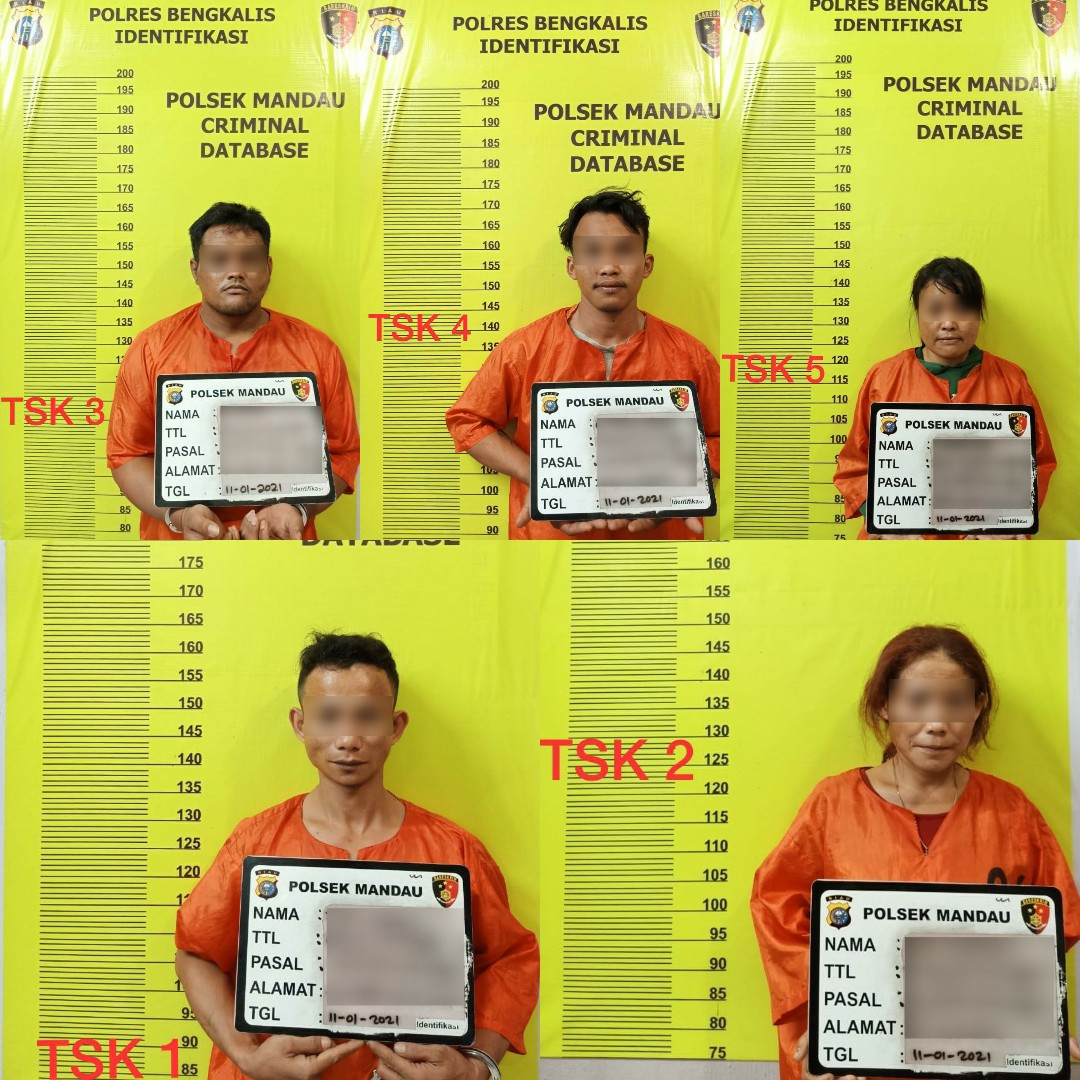 Dua Perempuan Tiga laki-laki di sikat Polsek Mandau, Akibat Miliki Narkotika
