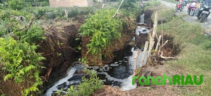 Kondisi Parit Tanah Gambut Desa Penampi Butuh Perhatian dari Pemkab Bengkalis