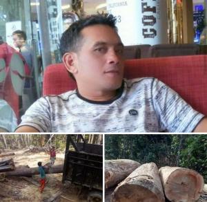 Praktisi Hukum Di Kuansing Geram,  Pelaku Pembalakan Liar Di Hutan Lindung Belum Terungkap