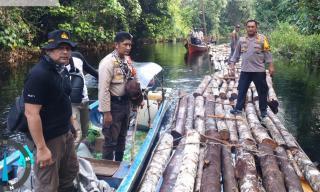 Polres Siak Selidiki Dugaan Tindak Pidana Ilegal Logging di Kampung Rawa Mekar Jaya