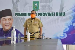 Dibuka Wagubri, Webinar Bahas Perkebunan Untuk Kesejahteraan Masyarakat Riau
