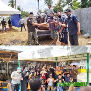H. Abi Bahrun : Hewan Qurban di Kirim ke Kecamatan Pinggir dan Berbagai Daerah