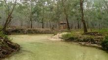 Pesona Alam Sungai Hijau di Kampar