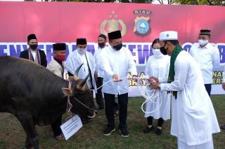 Kapolda Serahkan Secara Simbolis, Hewan Kurban Polda Riau Dan Jajaran Berjumlah 249 Ekor