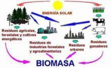 Pemprov Riau Dorong Pembangunan Pembangkit Listrik Biomassa