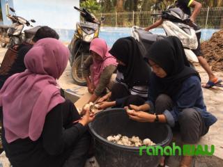 Program budidaya Jamur Merang di Desa Kampung baru Ukui